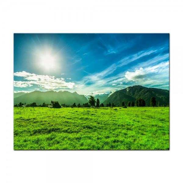 Leinwandbild - Grüne Landschaft in Neuseeland