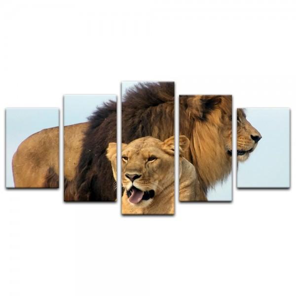 Leinwandbild - Löwenpaar