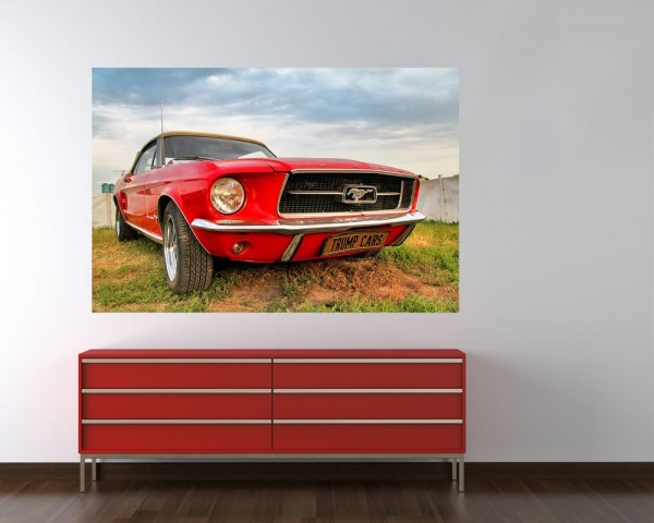 SALE Fototapete - Mustang - 135 cm x 90 cm - farbig