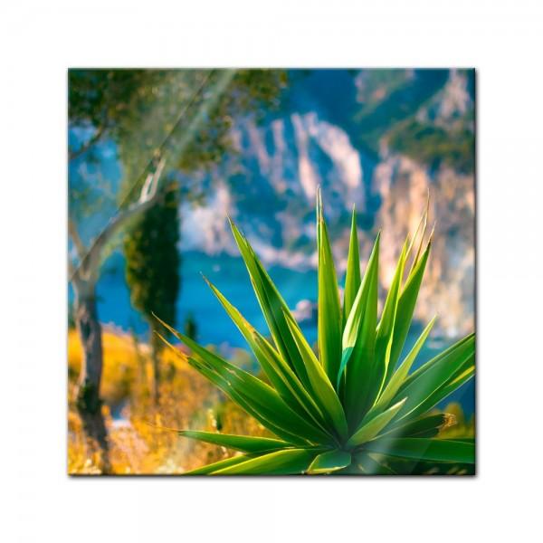 Glasbild - Aloe Vera - Paleokastritsa Bay