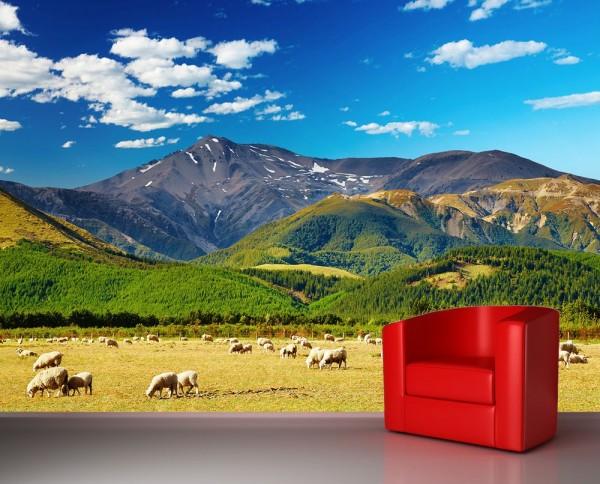 Fototapete - Berglandschaft Neuseeland