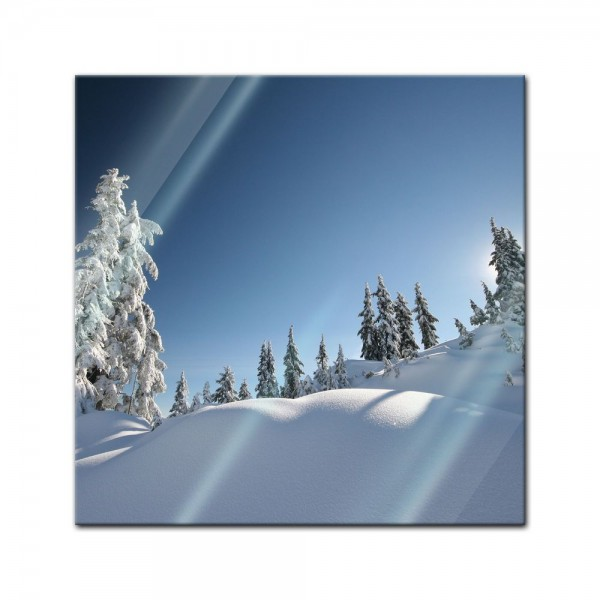 Glasbild - Frischer Schnee - Fresh snow