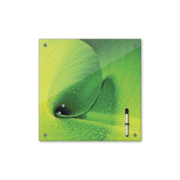 Memoboard - Pflanzen & Blumen - Bananenblatt - 40x40 cm