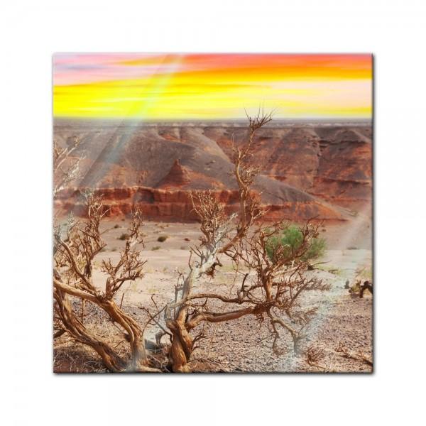 Glasbild - Wüste Gobi