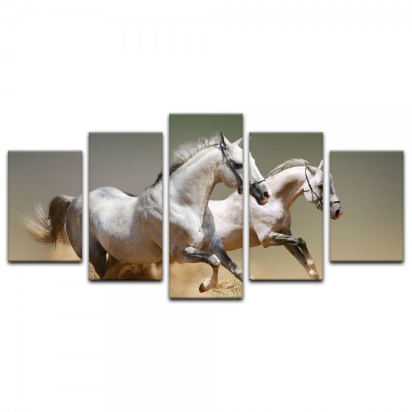 Leinwandbild - Pferde II