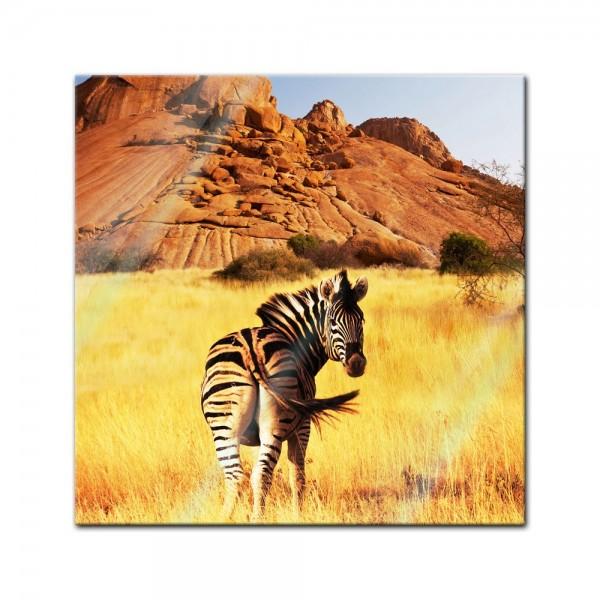 Glasbild - Zebra vor einem Gebirge