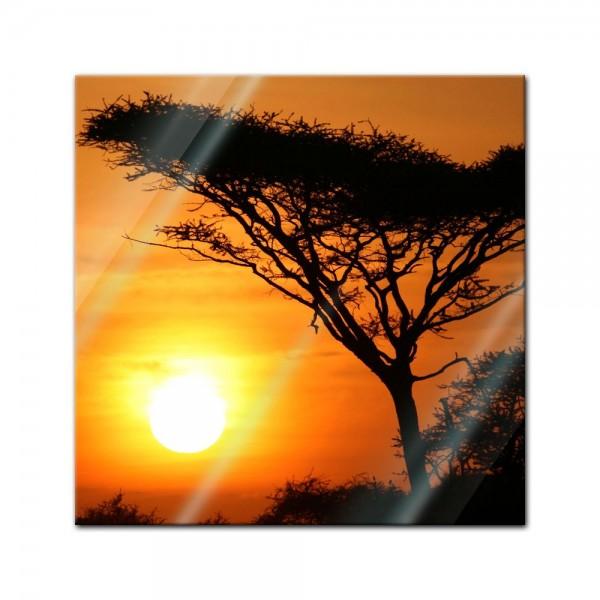 Glasbild - Akazienbaum im Sonnenuntergang, Tanzania Serengeti Afrika