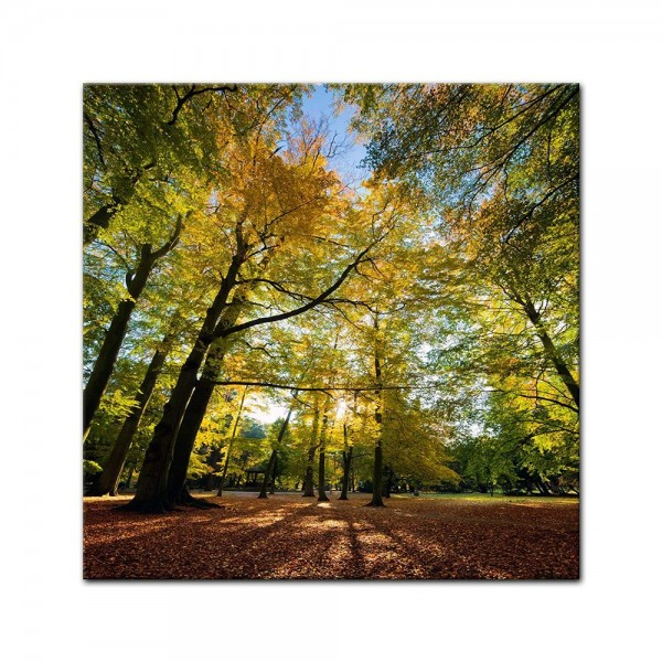 Leinwandbild - Blätterfall im Herbst
