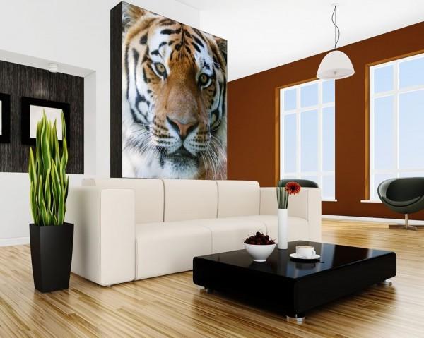 Fototapete Tigergesicht