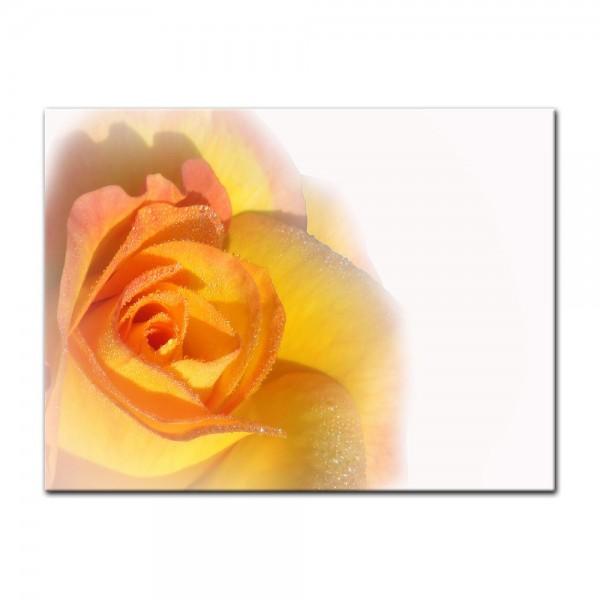 Leinwandbild - Gelbe Rose