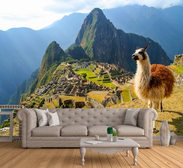 Fototapete - Alpaka am Machu Picchu Peru