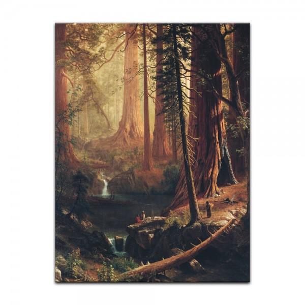 Leinwandbild - Albert Bierstadt - Giant Redwood Trees of California