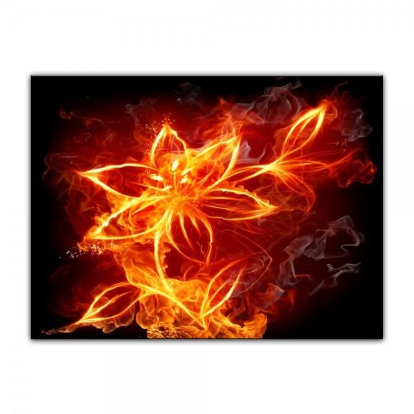 Leinwandbild - Feuerlilie