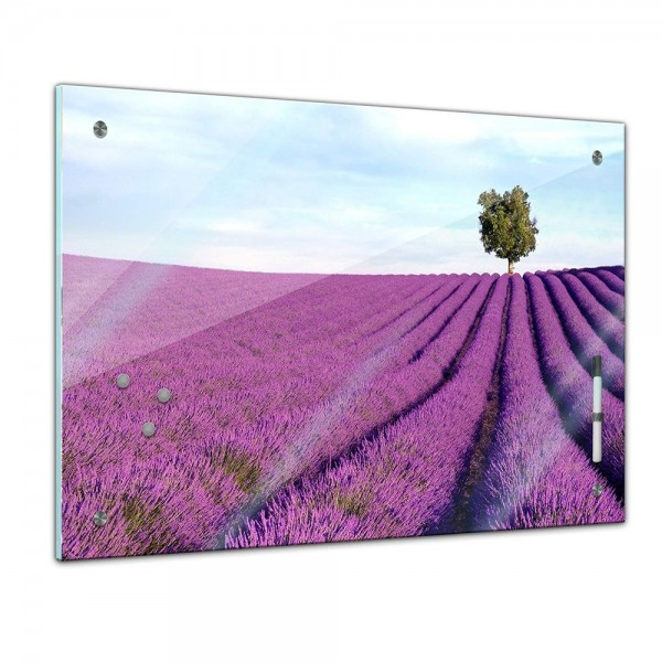Memoboard - Landschaft - Lavendelfeld Provence