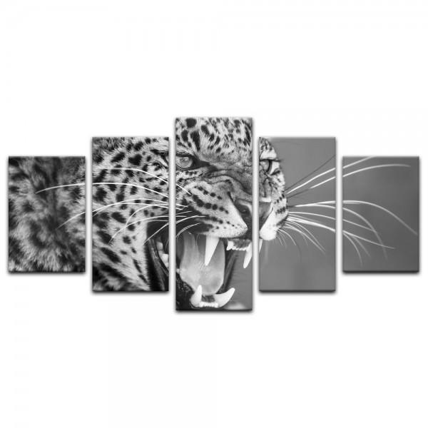 Leinwandbild - Leopard - schwarz weiß