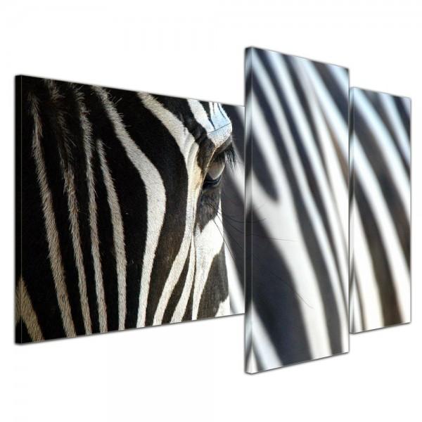 SALE Leinwandbild - Zebra - 130x80 cm 3tlg