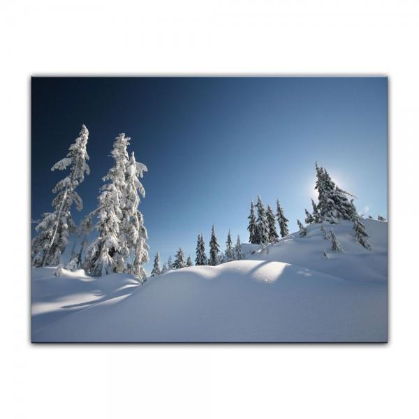 Leinwandbild - Schneelandschaft