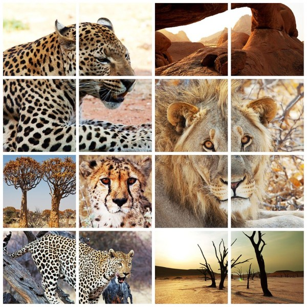 SALE Fototapete Afrika Collage I - 165 cm x 150 cm - farbig