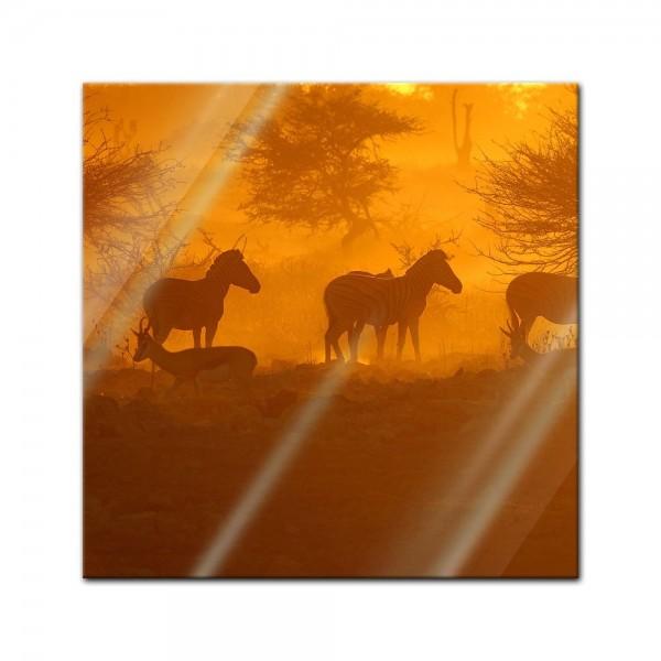 Glasbild - Kenia am Morgen