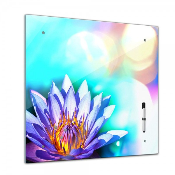 Memoboard - Pflanzen & Blumen - Lotusblüte - 40x40 cm