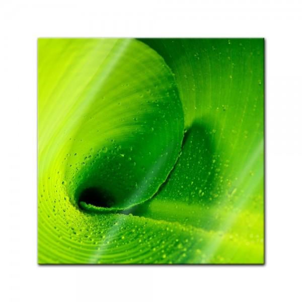 Glasbild - Bananenblatt