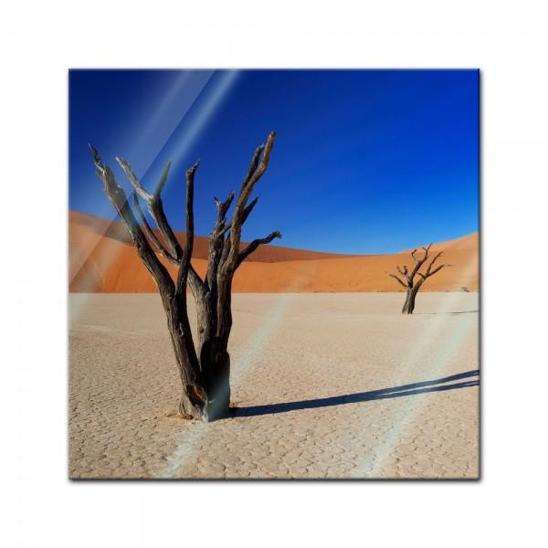 Glasbild - Tote Bäume im Death-Valley-Nationalpark