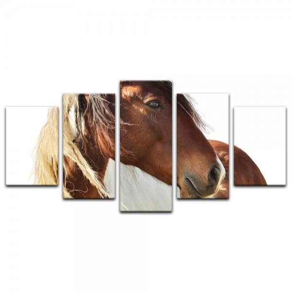 Leinwandbild - Pferd - Portrait