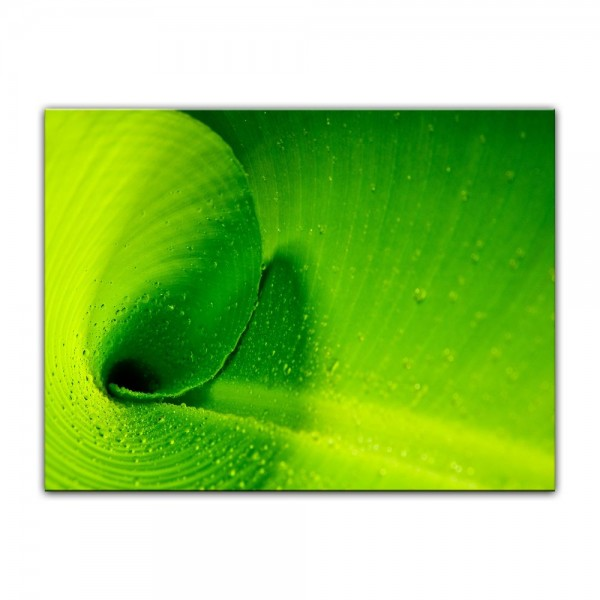 Leinwandbild - Bananenblatt