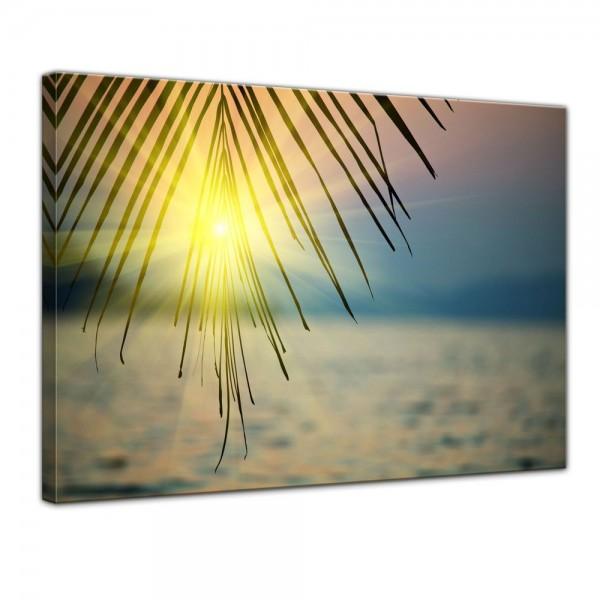 SALE Leinwandbild - Tropischer Sonnenuntergang III - 80x60 cm