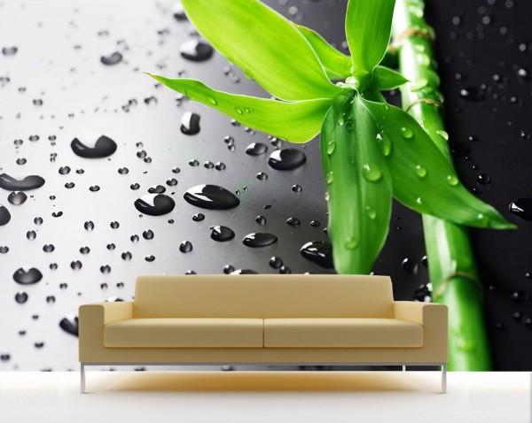 Fototapete - Frischer Bambus