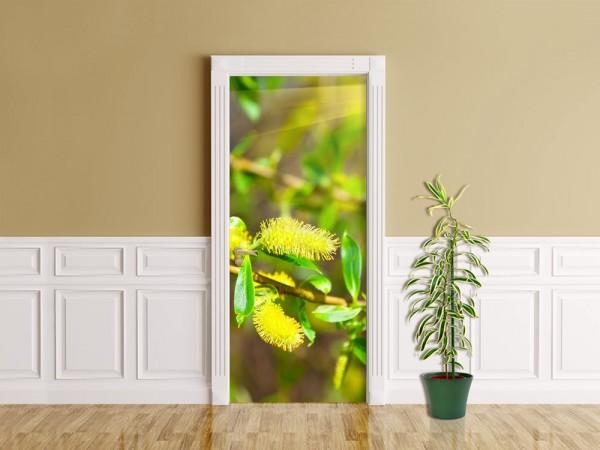 Türaufkleber - Blühende Weide