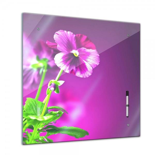 Memoboard - Pflanzen & Blumen - Stiefmütterchen - 40x40 cm