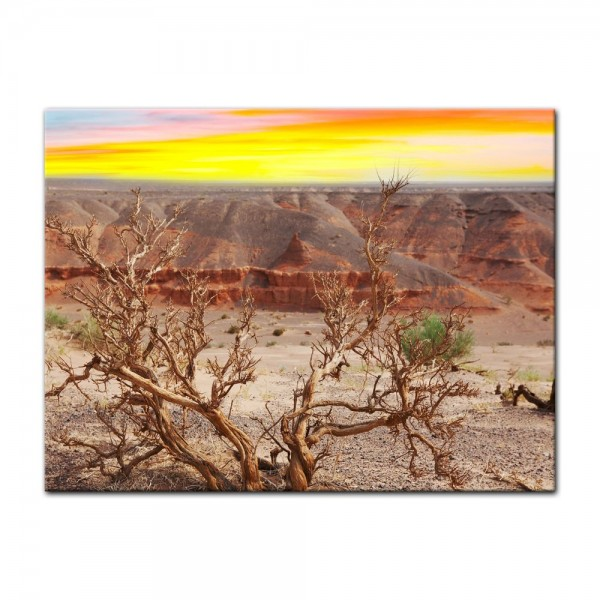 Leinwandbild - Wüste Gobi
