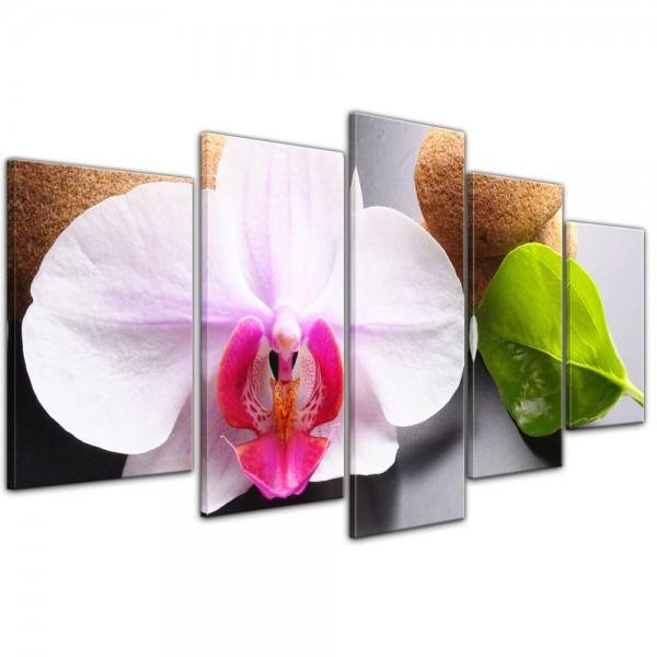 SALE Leinwandbild - Zen Steine und Orchidee - 100x50 cm 5tlg