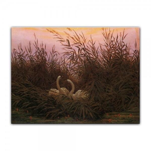 Leinwandbild - Caspar David Friedrich - Schwäne im Schilf beim ersten Morgenrot