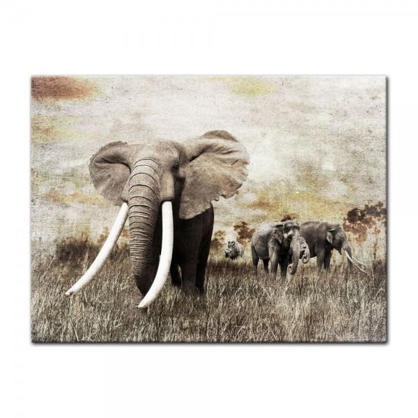 Leinwandbild - Elefanten - Grunge
