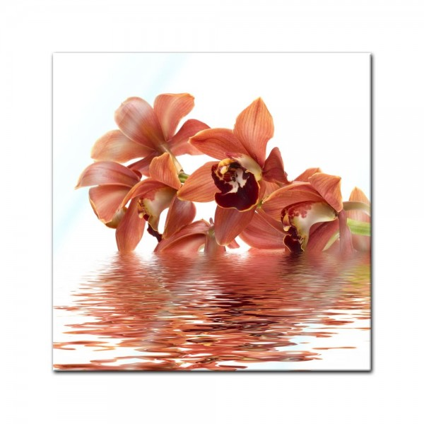 Glasbild - Orchidee