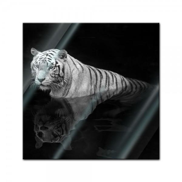 Glasbild - Weisser Tiger I