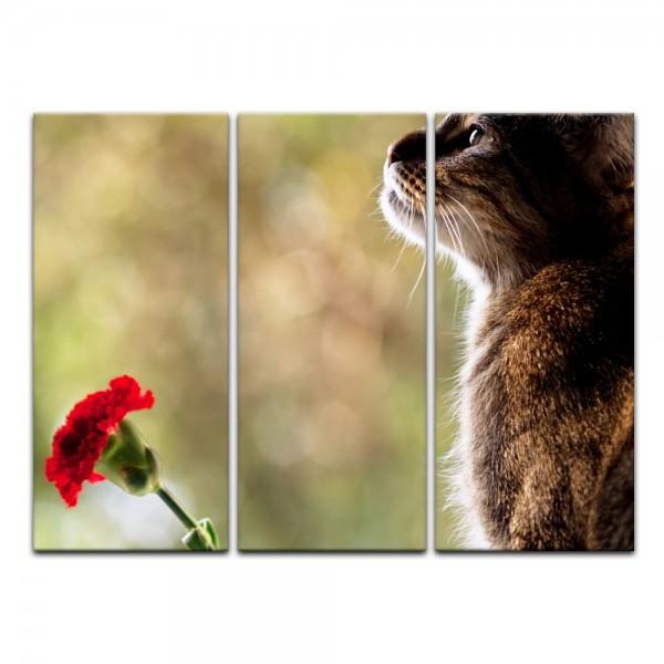 Leinwandbild - Katze und Blume