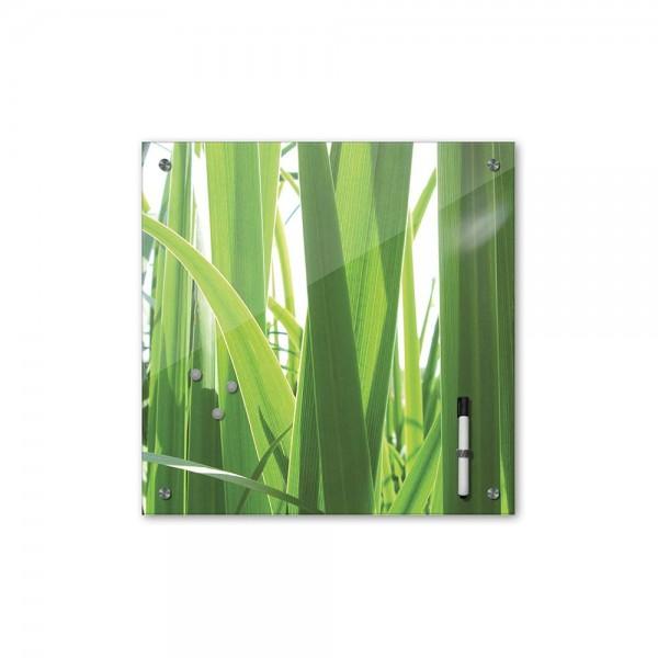 Memoboard - Pflanzen & Blumen - Gras - 40x40 cm