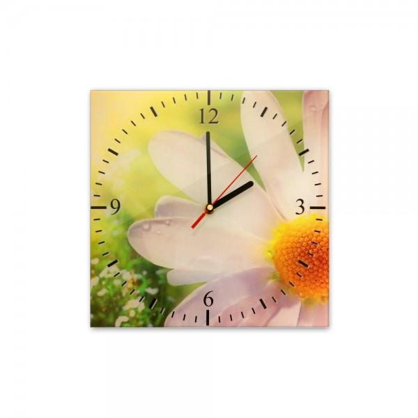 Glasuhr - Ganseblümchen - 036