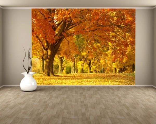 Fototapete Herbst II