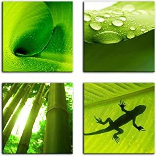 Leinwandbild Set 4 teilig Pflanzen
