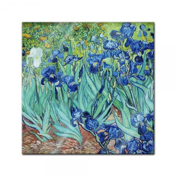 Glasbild Vincent van Gogh - Alte Meister - Iris