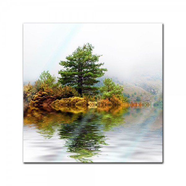 Glasbild - Pinienbaum