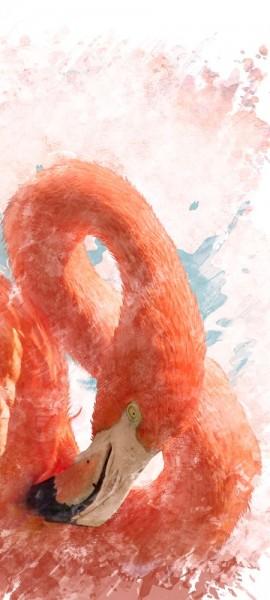 Türtapete selbstklebend Flamingo II 90 x 200 cm Wasserfarbe Aquarell Tier rosa Vogel Gefieder tropi