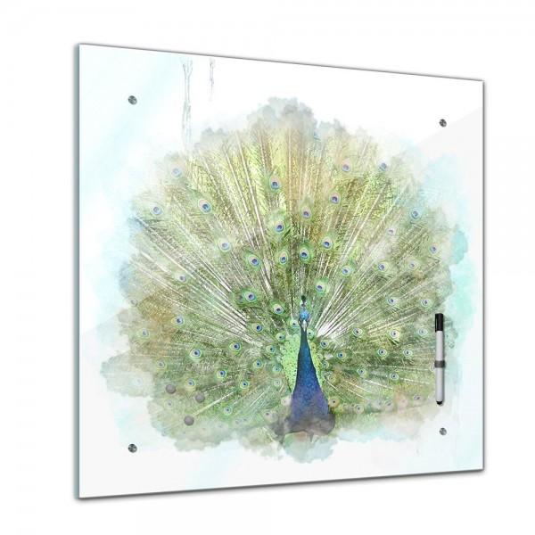 Memoboard - Aquarelle - Pfau - 40x40 cm
