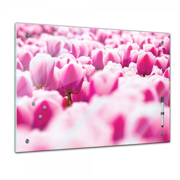 Memoboard - Pflanzen & Blumen - Tulpenfeld