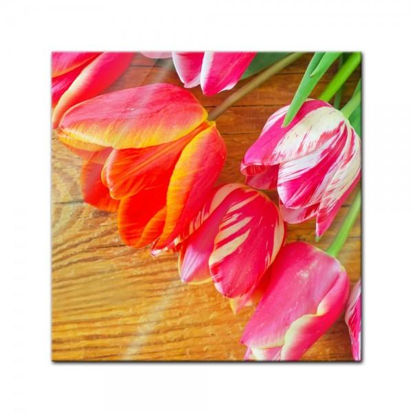 Glasbild - Tulpen