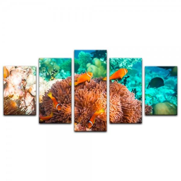 Leinwandbild - Unterwasserwelt IV